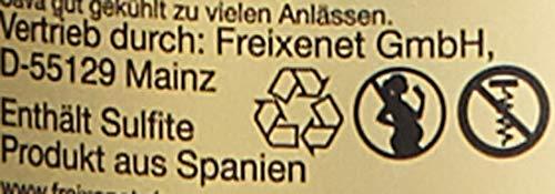 Freixenet Premium Cava Carta Nevada Semi Seco halbtrocken (6 x 0.75 l) - 7