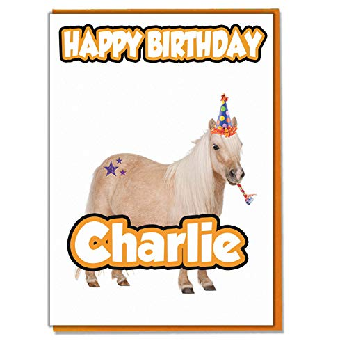 AK Giftshop Gepersonaliseerde Paard Shetland Pony Verjaardagskaart - Elke Naam Leeftijd Relatief
