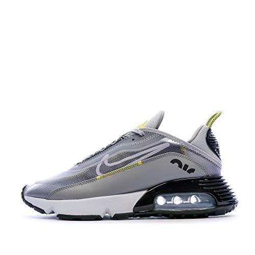 Nike Air MAX 2090, Zapatillas Deportivas Hombre, Wolf Grey/Blanco-Particle Grey, 45.5 EU