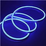 XUNATA 20m Flexible LED Neon lights Azul, Resistente al Agua 220V smd 2835 Tiras de LED, Líneas de Cables Luminoso Exterior para Fiestas y Decoración