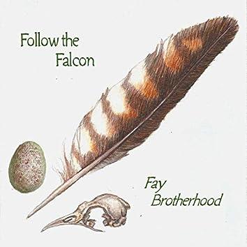 Follow the Falcon