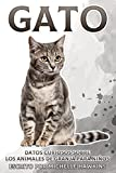 Gato: Datos curiosos sobre los animales de granja para niños #11