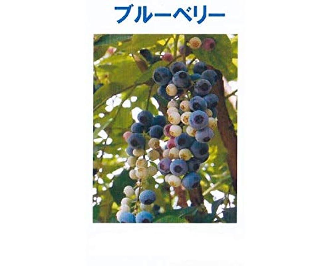 オーナー貫通する酸っぱいアロマオイル ブルーベリー 5ml エッセンシャルオイル 100%天然成分