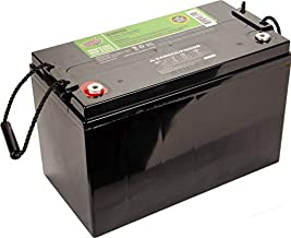 Interstate Batteries 12V 110 AH SLA/AGM Deep Cycle Battery for Solar, Wind, and RV Applications - Insert Terminals (DCM0100)