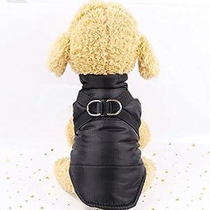 Dinglong Petit Manteau Imperméable pour Chien Veste d'hiver Rembourré Matelassé Doudoune pour Chien Pet Chiot Vêtements,6 Tailles