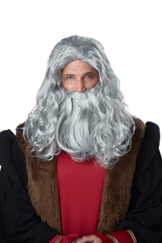 California Costumes Men's Renaissance Man Wig & Beard, Gray, One Size