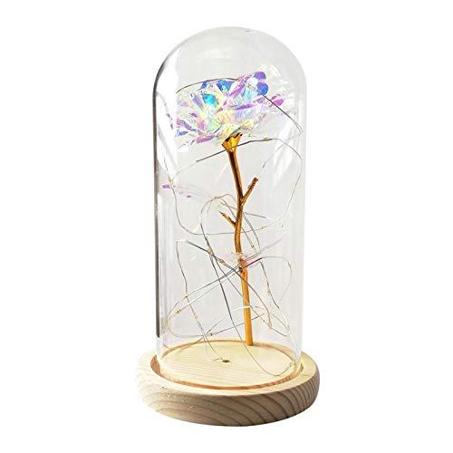 LOVIVER Los Mejores Regalos para Las Mujeres con la Cubierta de la cúpula de Cristal de Navidad, Día de San Valentín - Luces de Colores