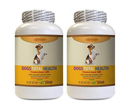 BEST PET SUPPLIES LLC Dog Eye Supplement - Total Dog Health Formula - Premium Complex - Helps Overall Health - Joint Hair Teeth UTI Support - Cranberry Pills for Dogs - 120 Tablets (2 Bottles)