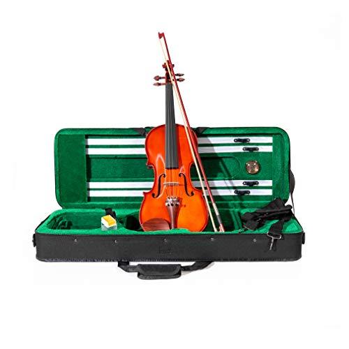 Violino ffalstaff  4/4'Accademy' con Top in Massello, Parti in Palissandro, Custodia Rettangolare e Accessori