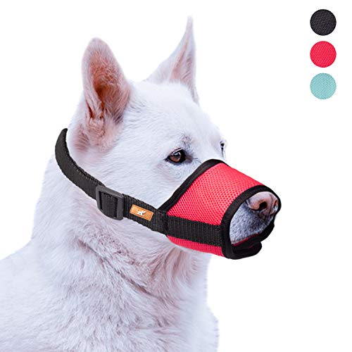 wintchuk Soft Dog Muzzle with Mesh Design, Breathable Dog Mouth Cover for Small Medium Large Dogs, Anti-Biting Barking Chewing (L,Green) Review