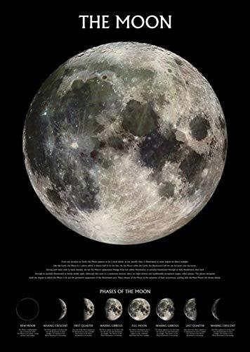 Pyramid Generic Der Mond 'Phasen' Maxi Poster, 61 x 91.5 cm, Drucken Mehrfarbig