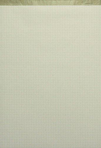 "Landre 100050296 - Blocco per appunti in carta riciclata, 10 pezzi, senza copertina Blocco appunti""Recycling"" senza copertina, A4, 50 fogli a quadretti A4"