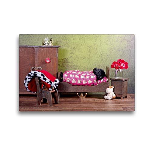 CALVENDO Premium Textil-Leinwand 45 x 30 cm Quer-Format EIN Blick in die Wurfkiste, Leinwanddruck von Kathrin Köntopp