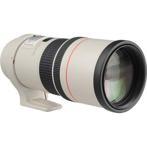 Canon単焦点望遠レンズEF300mmF4LISUSMフルサイズ対応