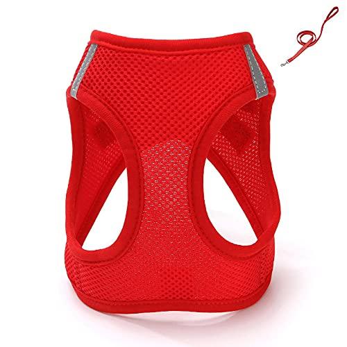 Juego de arnés y correa ajustable para mascotas para perros pequeños, cachorros y gatos, entrenamiento al aire libre y correr XL