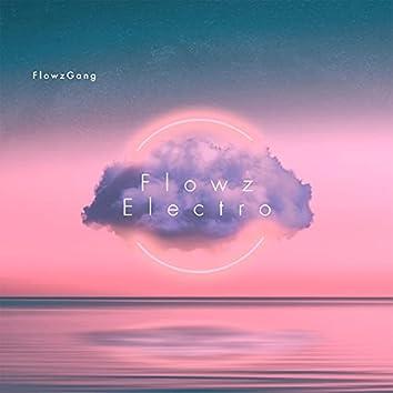 FlowzElectro