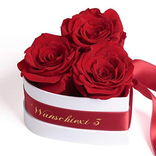 ROSEMARIE SCHULZ Heidelberg Blumenherz personalisierbare Rosenbox in Herzform 3 Infinity Rosen in Box mit Wunschtext ich Liebe Dich Geschenk für Frauen mit Herz (Rot, Wunschtext)
