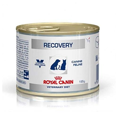 RECOVERY FEL/CAN. 12X195 GR (LATAS)