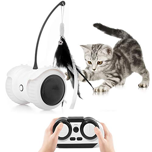 Magkay Interactive Cat Toys for Indoor Cats, USB Charging Auto/Remote Mode Timed with Colorful Led Wheels 6 Feathers Kitty Gadget Electronic Moving Cat Toys (Black)