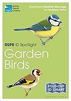 Garden Birds (RSPB ID Spotlight)