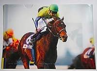 競馬 ディープインパクト クリアファイル ジャパンカップ Great horse story サラブレッドアート