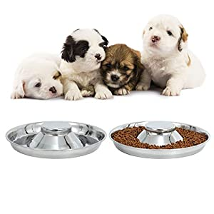 LEACOOLKEY Stainless Steel Dog Bowl-Puppy Feeder Food/Water Bowl-Puppy Feeding Bowls for Litters-Pet Feeder Bowl Whelping/Weaning Dishes Feeder for Small/Medium/Large Dogs Ste of 2 (L, C-Silver Color)