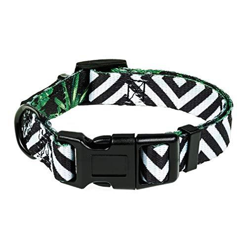 HAVNBERG Hundehalsband Gr. S Halsumfang 29cm - 39cm, Halsband für kleine Hunde oder Welpen, Breite 1,5cm, Welpenhalsband