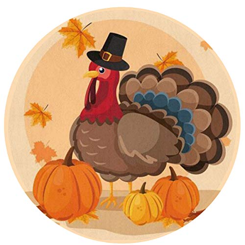 HMYATSO Turkey with Pumpkins and Hat Pilgrim of Thanksgiving Day Non Slip Absorbent Doormat Resist Dirt Front Door Mat 4060