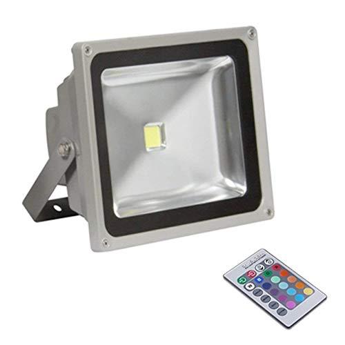 FARO LED RGB 30W PER ESTERNI IP65 Multicolor con telecomando di CS ELETTROINGROS