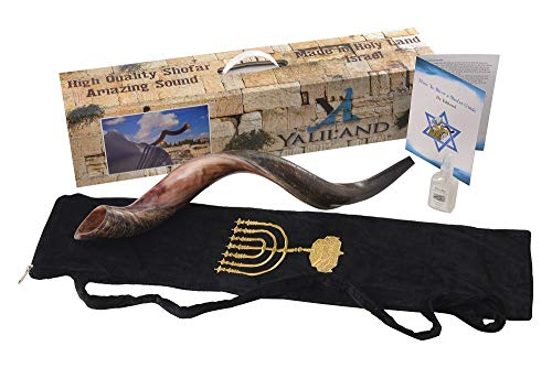 SHOFAR Set Half Polished Half Natural Kudu Horn Yemenite + Bag + Spray + Guide + Carrying Box Case (26'-28')