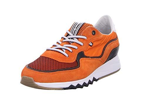 Floris van Bommel Floris Sport Orange - 9/43