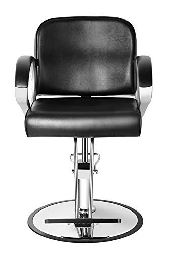 Beauty4Star Hair Styling Salon Chair Salon Furniture for Hair Cutting Styling Dyeing with Oil Pump for Height Adjusting and 360 Degree Rotation