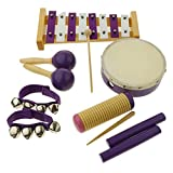Baosity Musical Instruments 8 Types Percussion Toy Set, Tambourine, Maracas, Wrist Bell, Xylophone