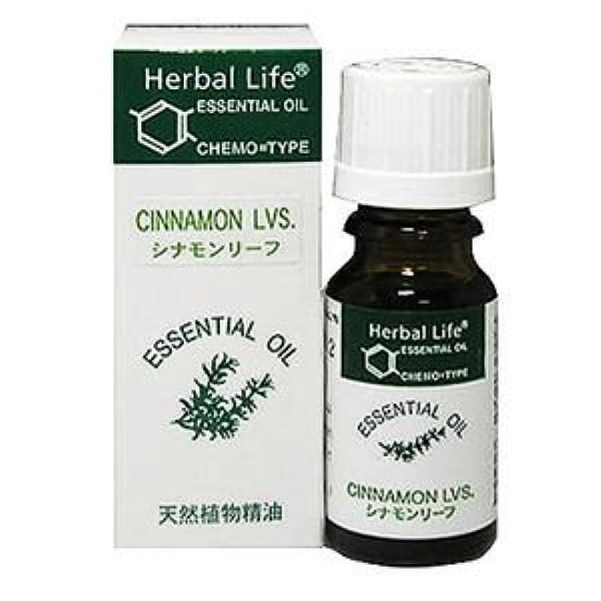 説得試み暗黙Herbal Life シナモンリーフ 10ml