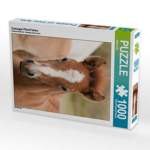 CALVENDO Puzzle Camargue Pferd Fohlen 1000 Teile Lege-Größe 48 x 64 cm Foto-Puzzle Bild von Meike Bölts