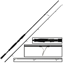 Fox Rage Ti Pro Big Bait Spin Canne à pêche 240 cm 40-160 g