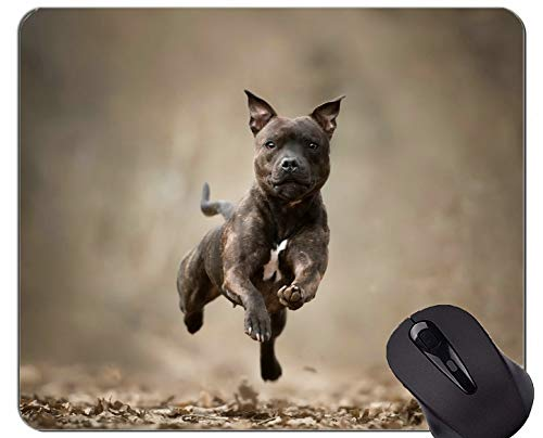 Yanteng Tappetini Mouse Mouse, Staffordshire Bull Terrier Dog - Bordi cuciti