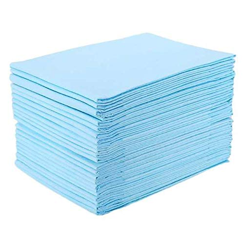 Incontinence Disposable Underpads(10 Pads), 30x36 inch Waterproof Breathable Disposable Mattress, Super Absorbent Pad, Bed Underpads Disposable,Suitable for Newborn Babies, Pets, Elderly