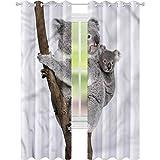 jinguizi Cortinas opacas Koala australiano Bear on a rama W42 x...