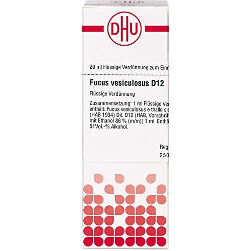 DHU Fucus vesiculosus D12 Dilution, 20 ml Lösung