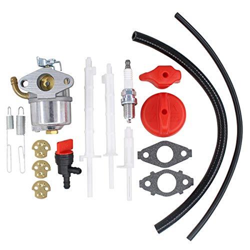 MOTOKU 798917 Carburetor for Briggs Stratton Engine for Craftsman for Ariens Snowblower Carb Replaces 794587 791953 791292