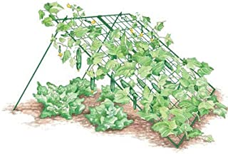 Gardener's Supply Company Large Cucumber Trellis