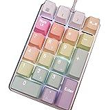 xSuper - Tastiera numerica meccanica, 21 tasti, con unicorno e 21 tasti, tastiera meccanica, per computer portatile, colore: Arcobaleno, interruttori Gateron Brown