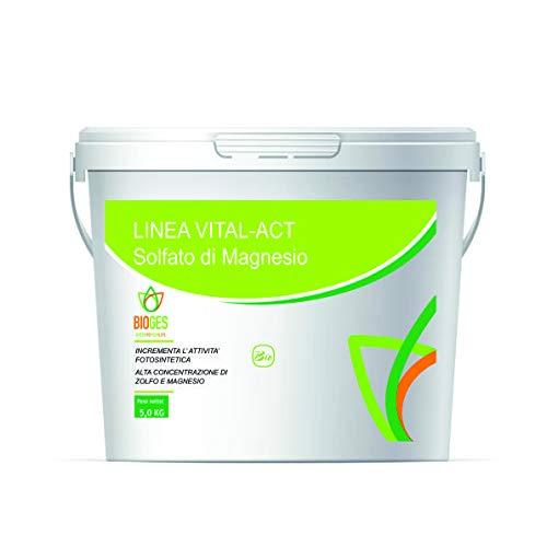 Bioges Solfato di Magnesio 5 kg Ideale per Tutte Le Piante