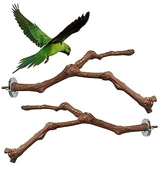 XYJJ 2 Pièces Perroquet Perchoir Bois, Perchoirs Bois Perroquet, Jouet à Suspendre Perroquet, Oiseaux Perchoirs Naturels, Perchoirs en Bois Naturel, pour Cockatiels Conures Aras
