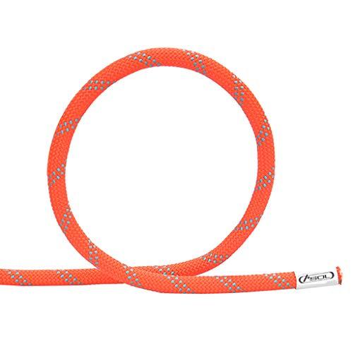 LLCY Rock Climbing Rope Climbing Rope Static Rope Aerial Work Rope 9.5/10.5/12/13mm Climbing Rope (Size : 13MM 10M)