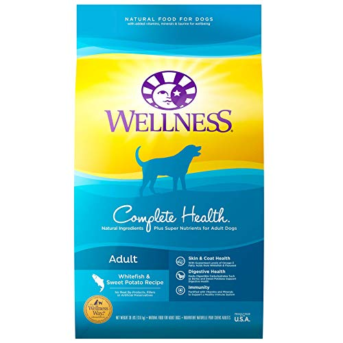 Wellness Natural Pet Food Complete Health Natural Dry Dog Food, Whitefish & Sweet Potato, 30-Pound Bag