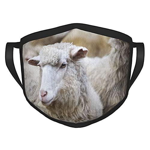 Schaf-Maulkorb im Freien stehend Staring Zucht Tiere Wildlife Gesichtsmaske Bequem und wiederverwendbar Masken mit schwarzen Kanten für Erwachsene