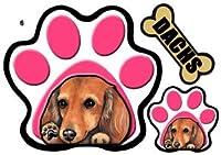 PAWパウ犬ステッカー ダックスフンド6/ミニチュアダックスフンド/ 足跡/パウステッカー/シール/ 雑貨 グッズ 車