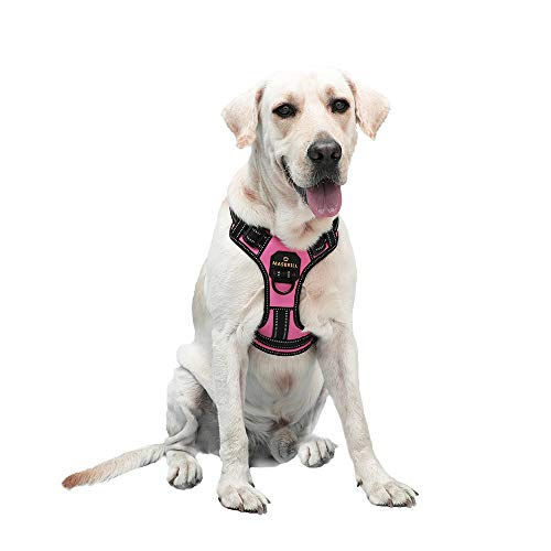 MASBRILL No Pull Dog Harness, No Choke Pet Vest Harness with Front and Back 2 Lead Clips, Adjustable Soft Padded Dog Vest with Easy Control Handle